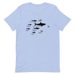 Shark Hierarchy T-Shirt